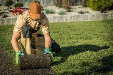 Landscaping Company L Alamogordo Nm L David S Landscaping Design Llc