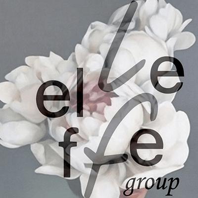 Parrucchiere Donna Reggio Calabria Rc Elleffe Group