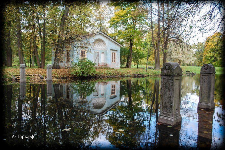 Паркетная доска фото ясень браш
