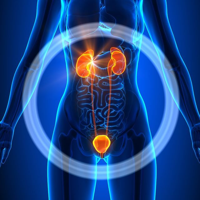 Urinary Tract Infection Uti Medical Center Of Marin Walk In Clinic