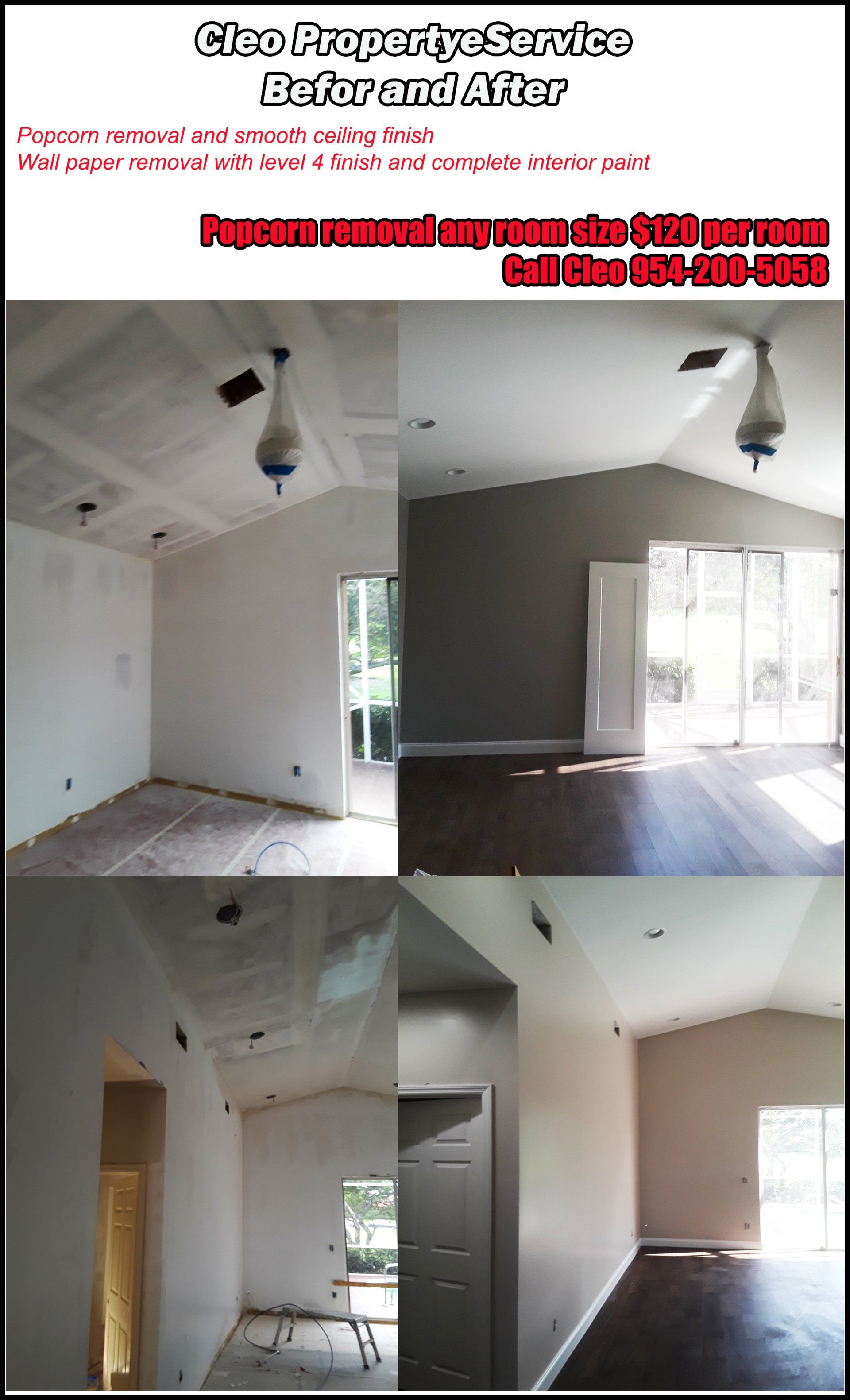 Cleo Popcorn Ceiling Removers