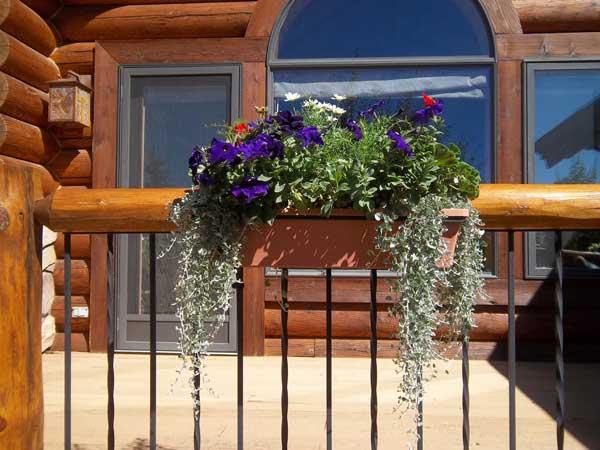 Gallery Colorado Springs Co Floral Gardening Inc
