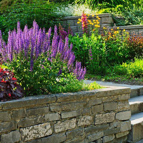 Flowering Services Colorado Springs Co Floral Gardening Inc