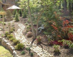 Drainage Solutions Professional Landscape Contractor Vines