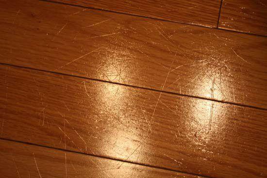 Hardwood Floors Pet Considerations