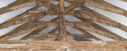 Treat woodworm to prevent damage