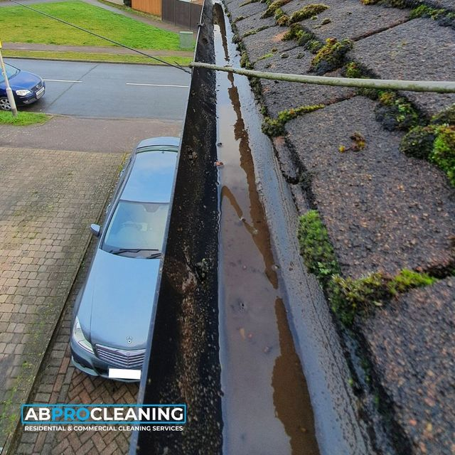 Gutter Cleaning Ab Pro Cleaning