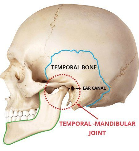 Temporomandibular Joint Disorder Tmd Restore Tmj Sleep