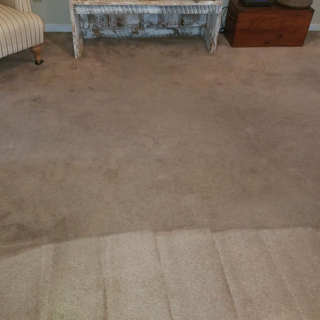 Upholstery Cleaning Southport Nc