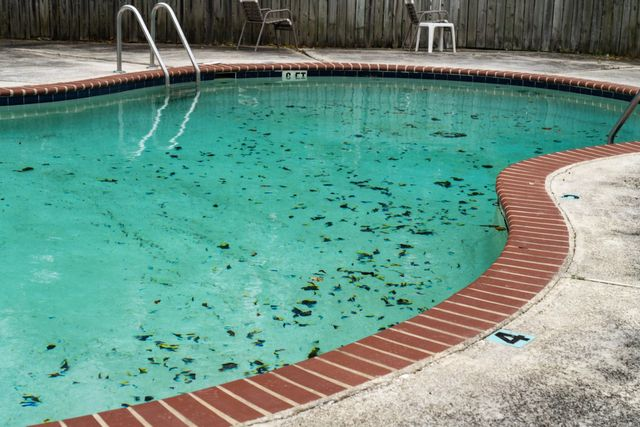 How To Remove Pool Stains Your Complete Guide