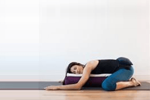 the art and skill of teaching restorative yoga  with