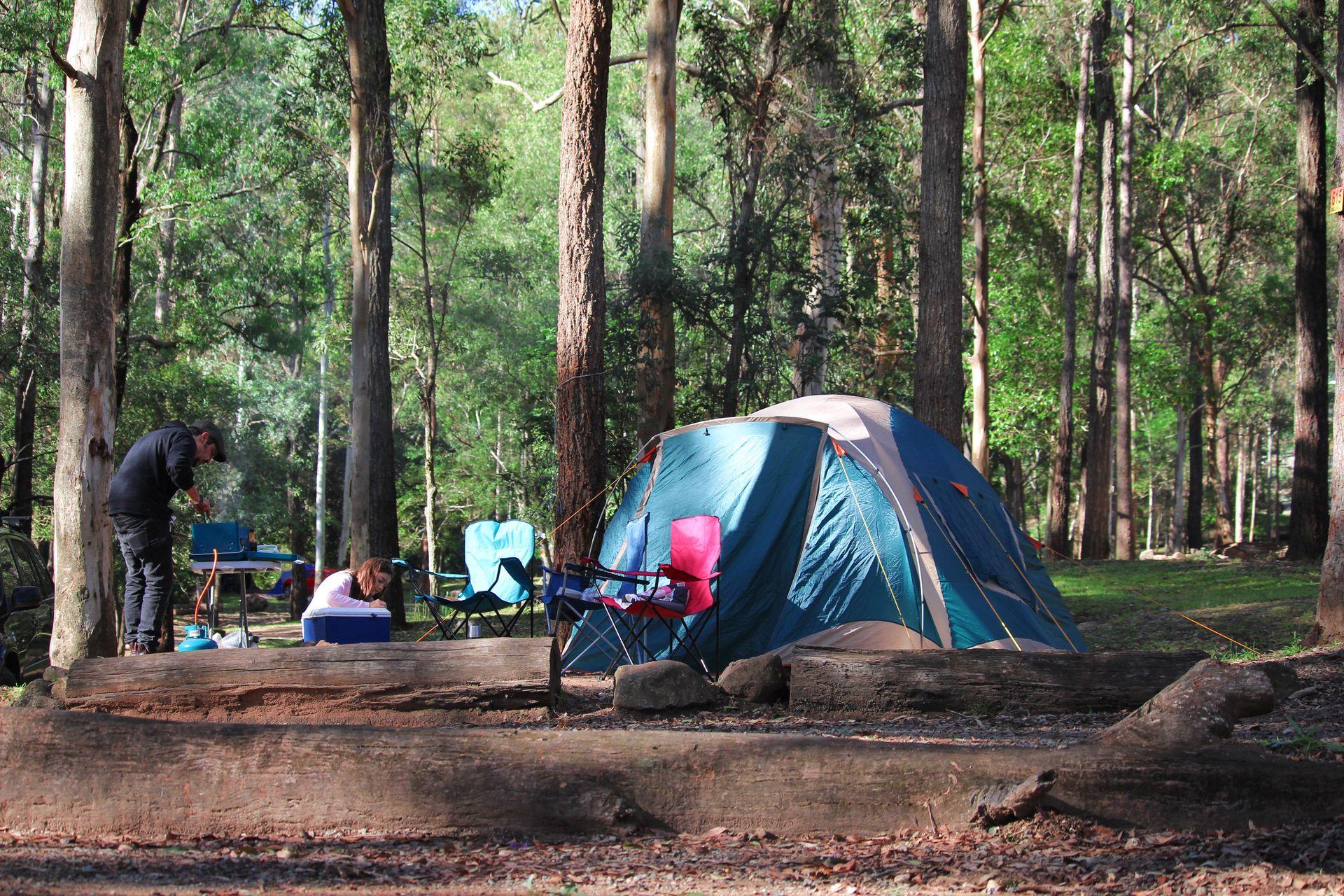 Thunderbird Park: Camping & Accommodation Tamborine ...