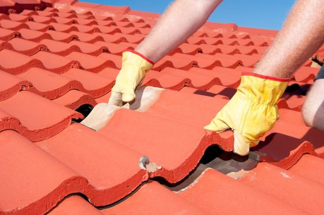 4 Key Points Homeowners Should Know About Roof Repointing