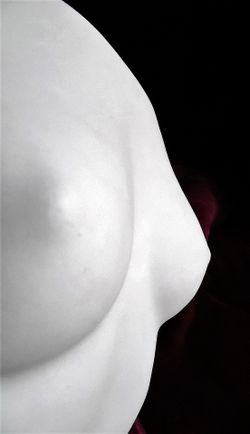 control mamario