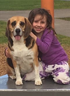beagle-with-young-child