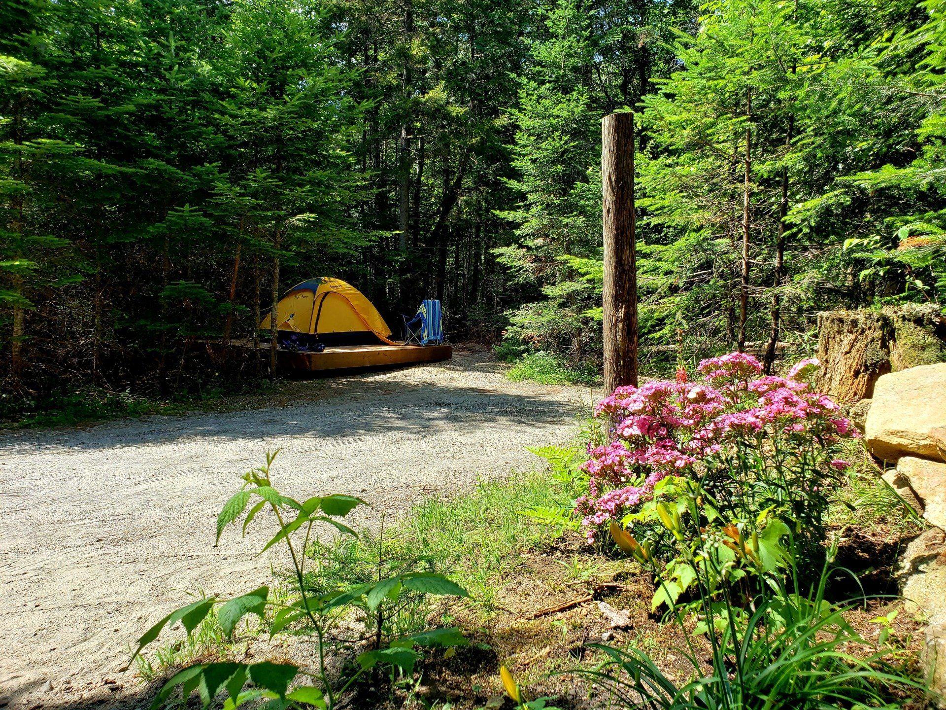 Tent Site Rentals Near Burke VT - Newark Camping Sites