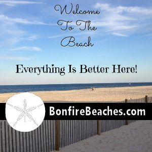 Everything Sea Shore