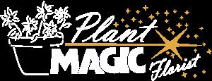 Plant Magic Florists