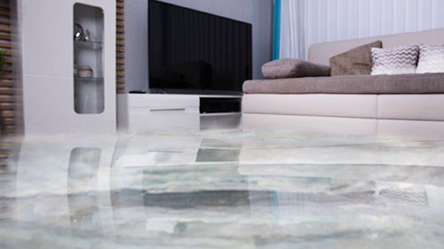 Carpet Cleaning Company Upholstery