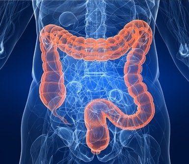 gastroenterologo e proctologo a Lugano