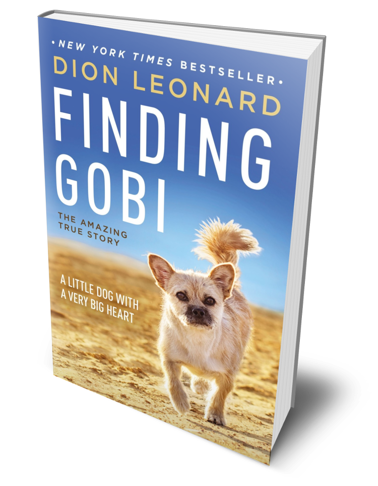 Finding Gobi Dion Leonard And Gobi Events And Book Tour